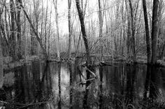 """Drain The Swamp."""