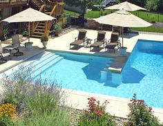 Swim Up Bar, Design Jardin, Deck, Small Pools, Swimming Pool Designs, Inground Pool Designs, Dream Pools, Traditional Landscape, Cool Pools