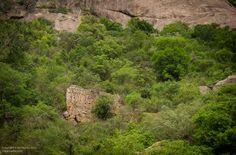 An unnamed fort near Kanakpura, south of Bangalore.