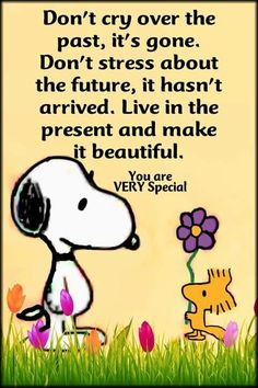 Don't cry over the past It's gone Don't stress about the future It hasn't arrived Live in the present and make it beautiful You are very special past future present is part of Snoopy quotes - Wisdom Quotes, Quotes To Live By, Me Quotes, Motivational Quotes, Funny Quotes, Inspirational Quotes, Dont Cry Quotes, Qoutes, Peanuts Quotes