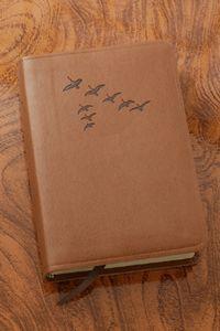brown bibles - Google Search