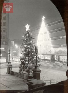 Christmas tree outside of City Hall, December 1957, Worcester Massachusetts. Photograph by George Cocaine.