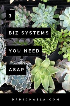 Are you feeling exhausted, irritable, and constantly scrambling to catch up in your business? These are major signs you could benefit from setting up some good SYSTEMS in your health/wellness business. This post highlights the top 3 systems you need to be implementing ASAP to save your sanity... and your bottom line! #systems #businesssystems #entrepreneurtips #drmichaela Time Management Tips, Business Management, Business Planning, Business Tips, Online Business, Goal Planning, How To Start A Blog, How To Make Money, Apps For Bloggers