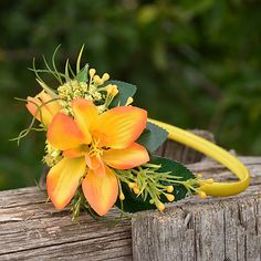 Čelenka do vlasov / Hydrangea - SAShE. Herbs, Plants, Herb, Plant, Planets, Medicinal Plants
