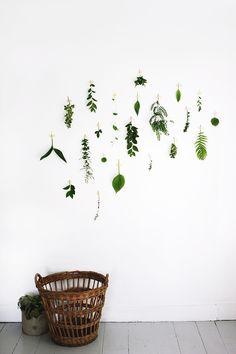 Foliage Wall #the2bandits #inspirationstation