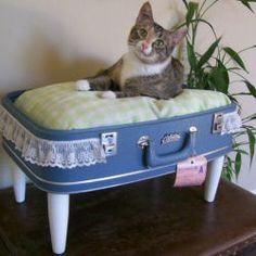 43 Ideas Why Not Throw Away Your Old Suitcases