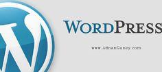 Adnan Güney: Neden Wordpress
