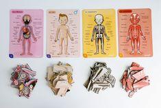 puzle-cuerpo-humano-sistemas Human Body, Montessori, Boho Chic, Printables, Educational Toys, Educational Games, Human Skeleton For Kids, Printable, Honey