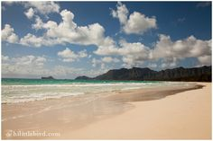 Bellows Beach, Waimanalo. Incredibly beautiful, toddler friendly, camping on weekends. Closed weekday mornings due to military use. www.hilittlebird.com