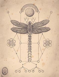 The Art of Daniel Martin Diaz / Mutation Machine / dragonfly / Sacred Geometry <3