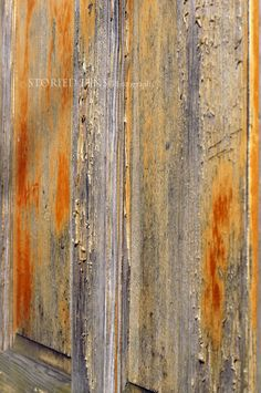 Fiery orange and yellow remnants streak this tattered weathered cedar door.   Photograph is protected by COPYRIGHT: Jocelyn Cook of Storied Lens. To view more of my work visit the Storied Lens ETSY shop, my website and become a fan on Facebook.  www.storiedlens.com