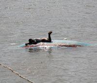 LATEST PIX: Now cyclone-triggered floods hit Odisha; 2.5 lakh marooned