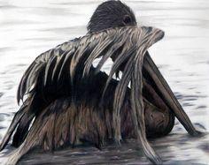 Oil Spill Pelican - Colored Pencil Drawing - Sam Luotonen