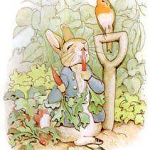 Free vintage illustration of a beatrix potter's peter rabbit