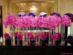 George V Hotel and Jeff Leatham, Paris Pink Orchids and Purple Hydrangeas. George V, Paris Hotel Flower Arrangements, Beautiful Flower Arrangements, Wedding Arrangements, Unique Flowers, Purple Hydrangea Centerpieces, Pink Orchids, Purple Hydrangeas, Jeff Leatham, Hotel Flowers