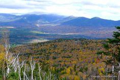 Climbing Mt Rosebrook - http://sectionhiker.com/climbing-mt-rosebrook/