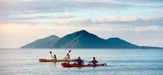 The Ethereal Coastal Strips of Australia: Ideal Incarnations of the Heaven Kayak Camping, Canoe And Kayak, Island Resort, Great Barrier Reef, Cairns, Amazing Destinations, Travel Around, Ethereal, Kayaking