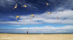 animation d'un cerf-volant volant dans le ciel. Son mouvement est répété et donne la sensation qu'il y en a pleins en train de voler.