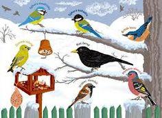 Výsledek obrázku pro ptáčci z papírové ruličky