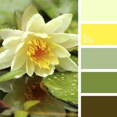 amarillo y verde, color amarillo, color amarillo cremoso, color verde, color verde hierba, color verde nenúfar, color verde pantano, elección del color, selección de colores, tonos verdes.