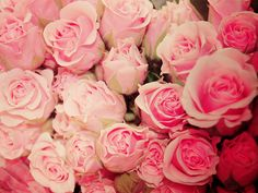 never enough roses