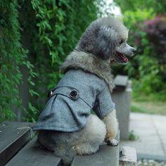 Winter Cat Dog Clothes Thick Furry Collar Round Button Belt Pet Dog Coat