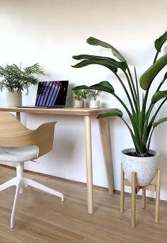 Home Decor Kitchen, Home Decor Bedroom, Living Room Decor, Minimal House Design, Minimal Decor, Home Room Design, Interior Design Tips, Stop Motion, Plant Decor