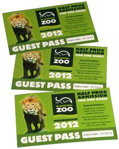 Leaflets, Blackpool, Cat, Colour, Printed, Color, Brochures, Cat Breeds, Prints