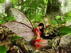 images of beautiful fairies and pixies - Bing images Fantasy Life, Fantasy World, Fantasy Art, Fantasy Images, Magical Creatures, Fantasy Creatures, Fairy Wallpaper, Fairies Photos, Cute Fairy