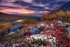 Озеро Имандра Имандра, Озеро, Кольский полуостров, осень, Хибины, Россия, Фото, Природа, длиннопост