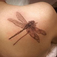 3d dragonfly tattoo on back