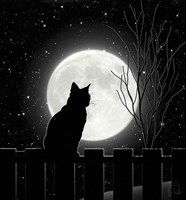 Silent Night Cat and full moon Art Print by glimmersmith Black Cat Aesthetic, Cat Wallpaper, Cat Sitting, Silent Night, Moon Art, Cat Art, Aesthetic Wallpapers, Cute Cats, Canvas Art