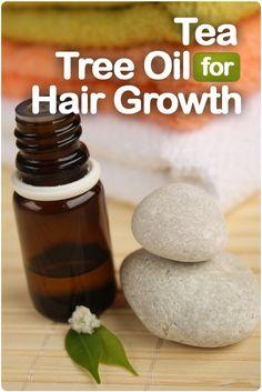 Teebaumöl für Haarwachstum