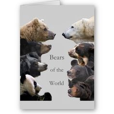 Bears Of The World by Andean_Bear_Bubu