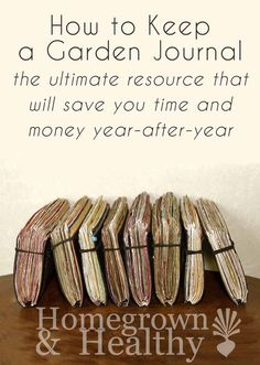 How to keep a garden journal, making it the ultimate resource that will save you time and money year-after-year.