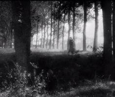 diaryofhorror: Vampyr - Carl Theodor Dreyer 1932 ... #Blood_Milk #BLOOD_MILK_ #Arts