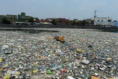 Women's institute calls on members to tackle plastic clothing pollution - The i newspaper online iNews