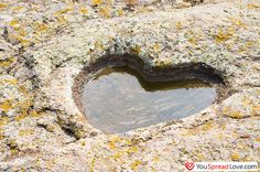 Heart Water Pool. Visit www.youspreadlove.com to give love to people you care about.