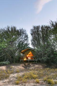 Chandelier Game Lodge & Ostrich Show Farm bied 'n bosveld-ervaring 8,7 km buite Oudtshoorn. Verblyf word in privaat en suite-tent-chalets en selfsorg-houtkothuise gebied. Ontbyt kan daagliks in die restaurant geniet word en ligte middagetes en aandetes is op versoek beskikbaar. Chandelier Game Lodge & Ostrich Show Farm offers a bush experience, 8.7 km outside Oudtshoorn. Accommodation is offered in private en-suite Tented Chalets, and self-catering Log Cabins. Game Lodge, Logs, Chandelier, Games, House Styles, Catering, Restaurant, Home Decor, Chalets