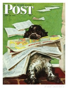 """""""Butch and the Sunday Paper,"""" Saturday Evening Post Cover, May 31, 1947 Gicléedruk van Albert Staehle bij AllPosters.nl"""