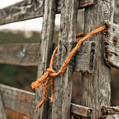 Old gate becomes art when photographed close up!
