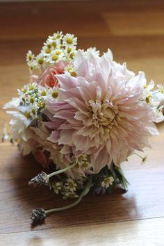 Love!    Cafe au lait dahlias in a bridesmaids bouquet