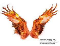 506 pheonix wings 02 by ~Tigers-stock on deviantART