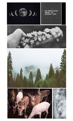 """""""~ For I can't help falling in love with you ~"""" by losing-my-mind-anons ❤ liked on Polyvore"""