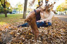 Cachorro faz sucesso ao estragar ensaio fotográfico de noivado dos tutores