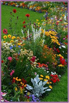 Find Great Tips On How To Landscape And Plant a New Flower Garden Just In Time For Spring! Find Great Tips On How To Landscape And Plant a New Flower Garden Just In Time For Spring! Beautiful Flowers, Plants, Beautiful Gardens, Backyard Garden, Planting Flowers, Backyard Landscaping Designs, Beautiful Flowers Garden, Garden Design, Cottage Garden