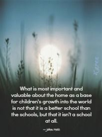 Homeschool:  This is part four in my five-part continuing series of blog posts for parents who are considering the homeschool lifestyle.    John Holt Quote