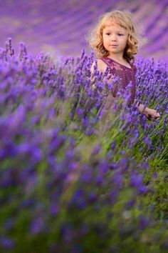 Photography - lovely perspective for portraits - crouch down low in a field to capture the lavender at the front - focus on your image that is far away and off-centre. Lavender Cottage, Lavender Garden, Lavender Fields, Lavender Flowers, Purple Flowers, Lavender Tea, French Lavender, Lavender Color, Foto Portrait