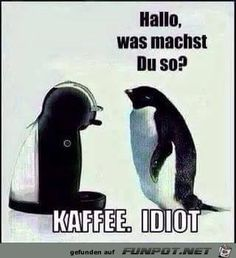 Hallo, was machts Du so? Funny Thank You, Frases Humor, Humor Grafico, Quotes And Notes, Good Jokes, Stupid Jokes, Funny Shit, Big Love, Coffee Humor