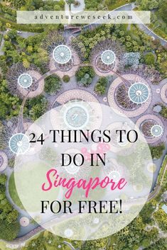 Singapore is amazing but can be expensive to visit. Wondering what to do in Singapore on a budget? Read this travel guide for fun FREE things to do in Singapore, best places to see, inexpensive…More Little India Singapore, Singapore Things To Do, Singapore Travel Tips, Visit Singapore, Cheap Travel, Budget Travel, Sentosa Island Singapore, Sushi Bar, Singapore Attractions